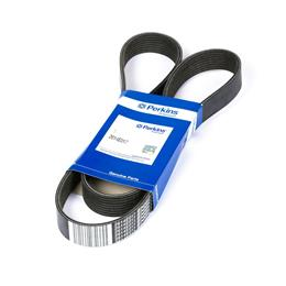 Serpentine belt - 142cm