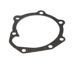 145996970 - Water pump gasket